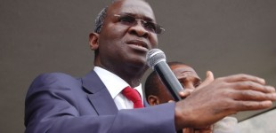 PDP Looted Our Destiny, Prospects, Says Fashola