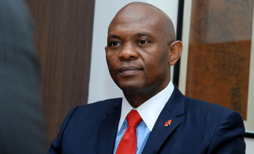 Vacation blues…All work and no play makes Tony Elumelu a dull boy