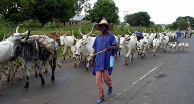 Herdsmen attacks: Okogie, Iwuanyanwu, MASSOB spit fire