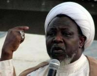 Falana Warns Against Continued Detention Of El-Zakzaky