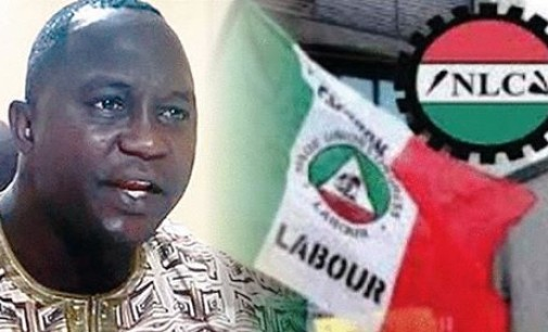 Fuel price hike: Govt, NLC return to negotiation table