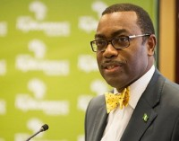 AfDB Allegations: Independent Review Panel Clears Adesina