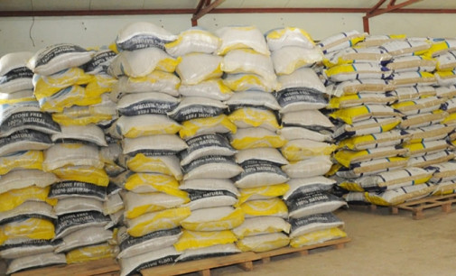 Bumper harvest: Operators predict rice to sell for N6,000/bag