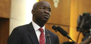 It's not FG's problem if Nigerians lack electricity – Fashola