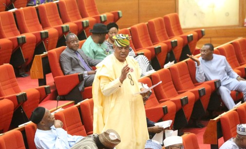 2019: Towards A Vibrant, Experienced Representation for Lagos East in the Senate