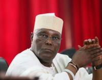 Money Laundering: Atiku's Son-in-Son-in-Law, Lawyers To Get Separate  Trials
