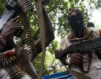 Gunmen invade Sokoto village, abduct lawmaker