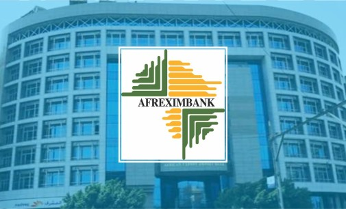 Analysts Back Afreximbank's Push for Foreign Reserves Domestication