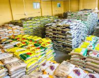 Food for all: Ogun State Begins Distribution of Foods, Other Items to Residents